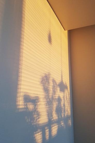 7:00 God morgon! Det första jag såg när jag slog upp mina blå var solreflektioner på väggen. Jag har inte sol på morgonen - solen reflekteras i fönster i hus i fjärran och reflektionen är så stark att den lyser in hos mig!